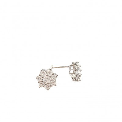SS Earg 5Mm Clear Cz Flower Stud, Multicolor