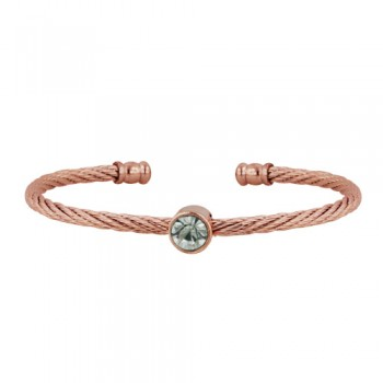 Stainless Steel Bangle Rd W/ Cl Cz Rose Gold Tone, Golden